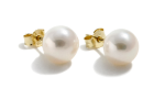 White Cultured Freshwater Ear Studs 7.5-8mm round AAA quality Gold 14ct