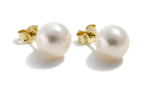 White Cultured Freshwater Ear Studs 8-8.5mm round AAA quality Gold 14ct